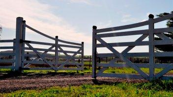 Actividad inmobiliaria rural: en septiembre hubo caída del 10 por ciento