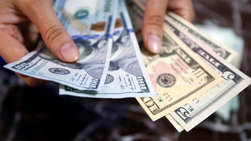 Cómo se puede comprar ¿se necesita un permiso — Dólar solidario