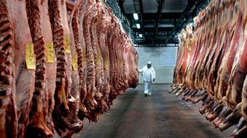 Por coronavirus, se prevé fuerte caída de exportaciones de carne a China