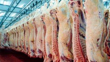 Argentina logró la mayor tasa de crecimiento de exportación de carne