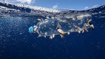 El plástico sigue dando que hablar: la contaminación no cesa ni en pandemia