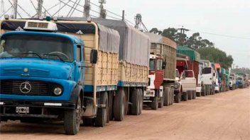 Siete países sudamericanos fijan pautas para garantizar el tránsito de alimentos