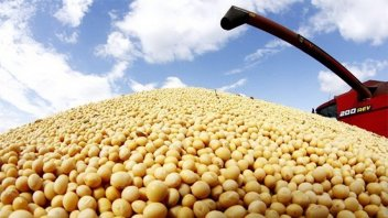 La soja alcanzó su precio más alto de los últimos dos años en Chicago