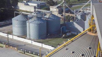 Agroexportadoras liquidaron más de 1.600 millones de dólares en enero