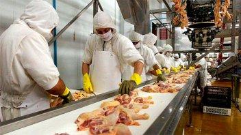 Acordaron un aumento del 12 por ciento para los trabajadores avícolas
