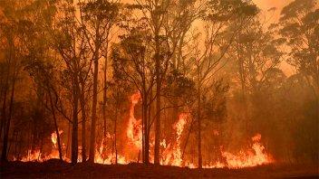 Los incendios forestales avanzan en Australia