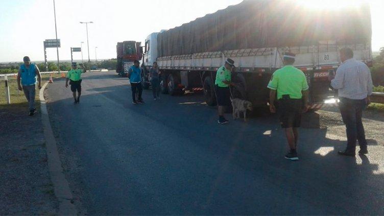 Incautaron 1200 kilos marihuana que habían ingresado a Entre Ríos