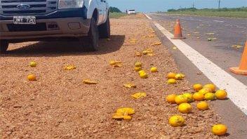 Camión volcó parte de su carga de citrus sobre la autovía
