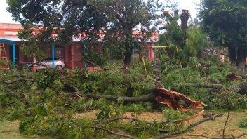 Temporal de lluvia y viento: Dos hermanitas heridas al caer la pared de su casa