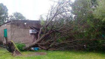 El gobierno provincial asiste a familias afectadas por la lluvia