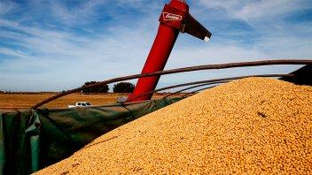 Campaña agrícola:Sería de 138 millones de toneladas y el maíz superará a la soja
