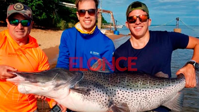 Video y fotos: entrerriano pescó un enorme surubí y lo devolvió al río Paraná