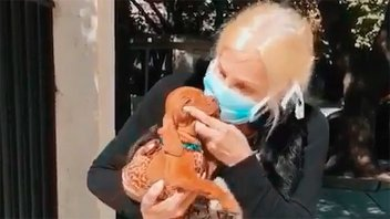Susana Giménez fue testeada por coronavirus tras su accidente doméstico