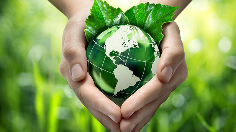 La hora de la Naturaleza: Día Mundial del Medio Ambiente ...