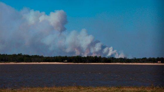 Amplían denuncia por quema de pastizales en las islas del río Paraná