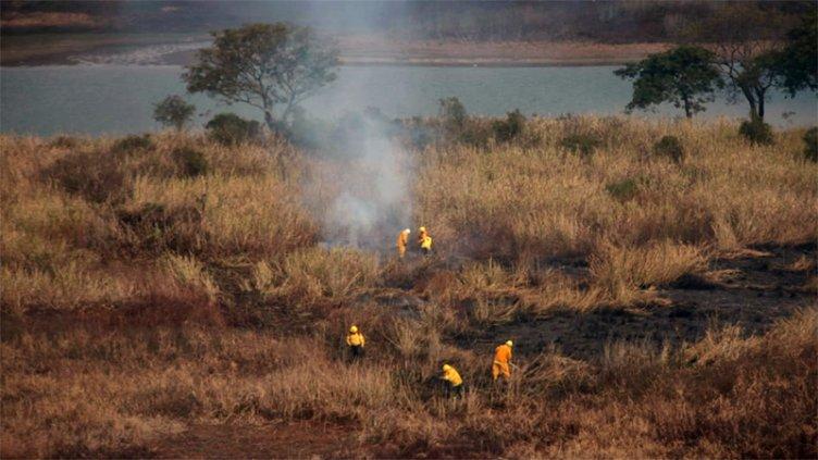 La Justicia Federal prohibió la quema de pastizales en la zona de islas