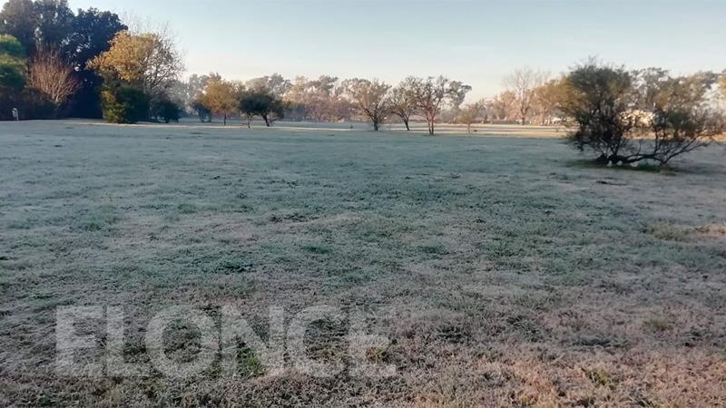 Así se vio la helada en el Parque Botánico, en Paraná