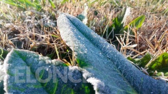 Frío invernal: Pronostican que estará algo más templado el fin de semana
