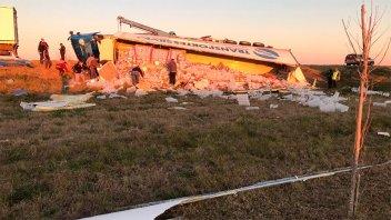 Camión que transportaba kiwis volcó en la ruta: El chofer fue hospitalizado