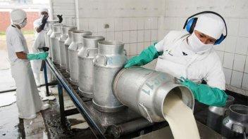 Industria láctea advierte que hay empresas al borde del colapso