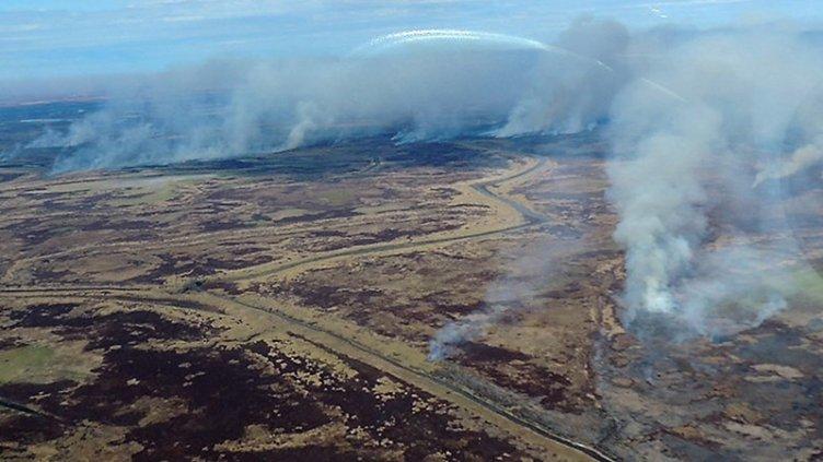 Se declaró la emergencia ambiental por los incendios en el Delta entrerriano