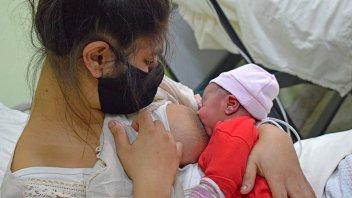 Covid: leche materna de mujeres infectadas o vacunadas transmite anticuerpos