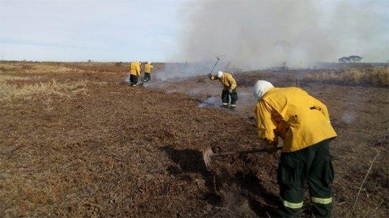 El viento reavivó algunos focos de incendios en islas de Victoria