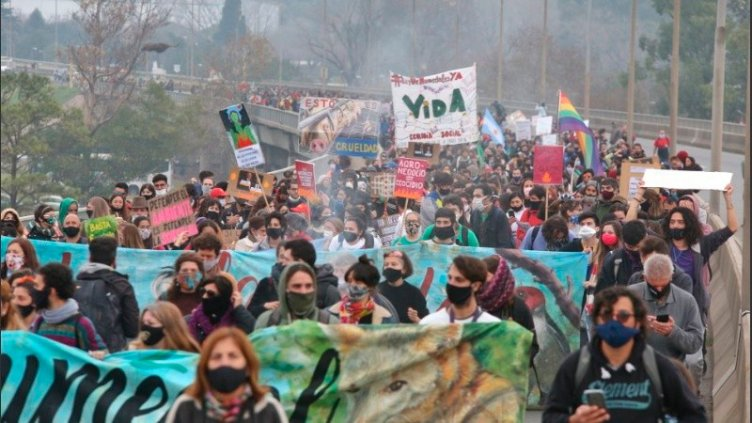 La marcha contra las quemas en islas cruzó el puente de Rosario hacia Victoria