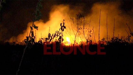 Dotaciones de Bomberos de varias ciudades intentan apagar incendio en un campo