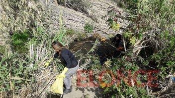 Vecinos de zona sur limpiaron un tramo del arroyo Antoñico