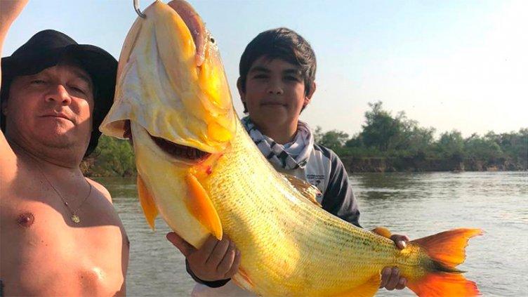 Videos: Tiene 12 años y pescó un dorado gigante de más de 20 kilos en el Paraná
