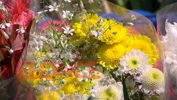 Día primavera: Repercusión en comercios y floristas