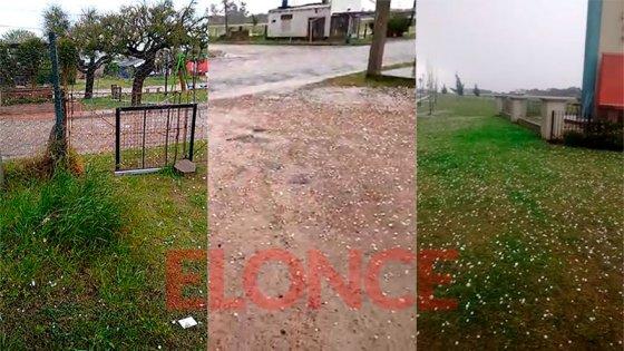 Granizo y fuerte tormenta causó caída de árboles y daños en zonas de Entre Ríos