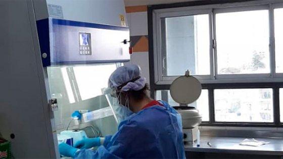 Reportaron 586 casos de coronavirus en 16 departamentos: Gualeguaychú sumó 116