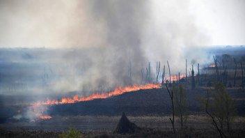 Incendios en islas del delta: Todavía nadie fue identificado como posible autor