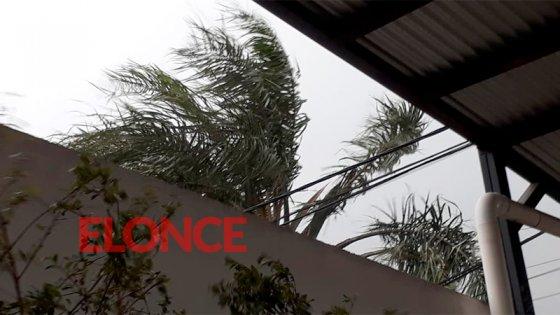 Alertan por vientos intensos en zona de Entre Ríos: podrían alcanzar los 60 km/h