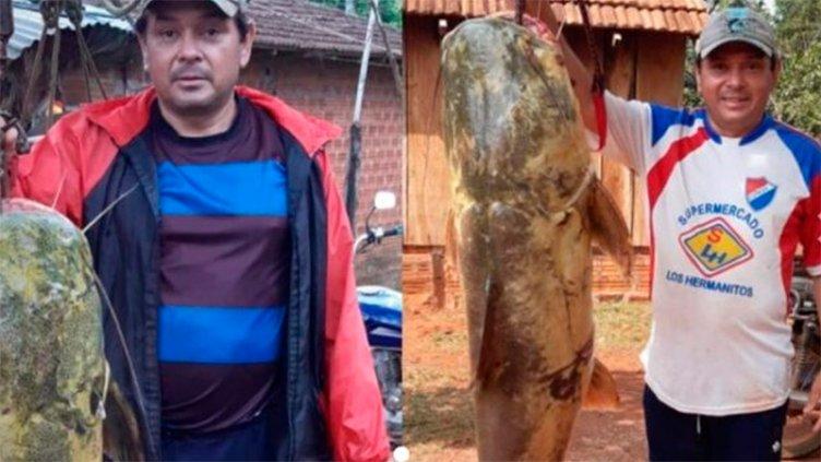 Video: Pescaron y no devolvieron un pez de 44 kilos que está en vía de extinción