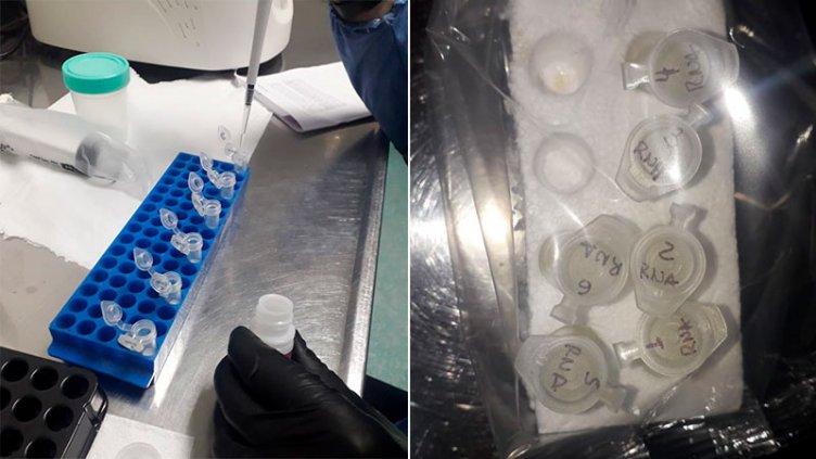 Reportaron 312 casos de coronavirus en catorce departamentos: Parana sumó 80