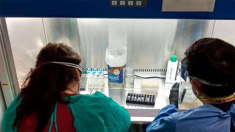 Sigue alta la cifra de casos de coronavirus en la provincia: reportaron 640