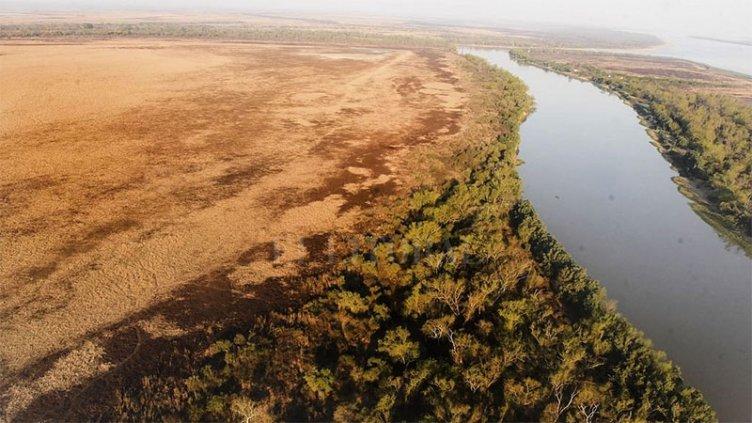 Buscan proteger la isla del río Paraná que nació tras el choque de dos barcos