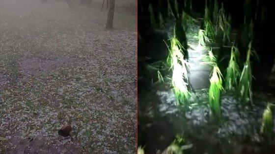 Videos: El granizo hizo estragos en algunas zonas de Entre Ríos
