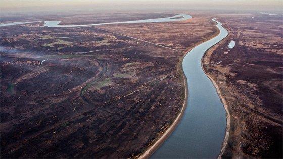 Incendios en el Delta: en lo que va del año se detectaron 39.146 focos de calor