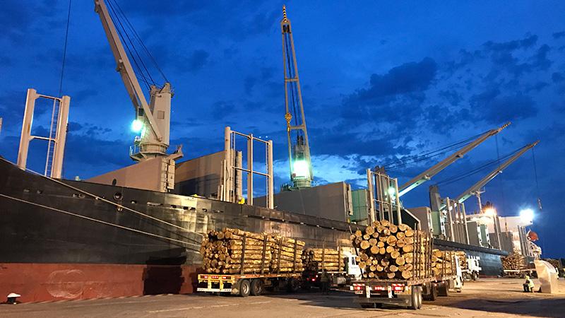 Llegan dos buques en una semana al puerto de Concepción del Uruguay -  Economía - Elonce.com