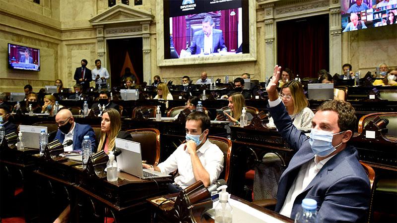 diputados nacion voto movilidad jubilatoria