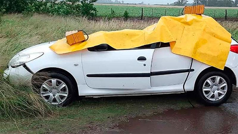 Un árbol cayó sobre un auto y murió una nena.