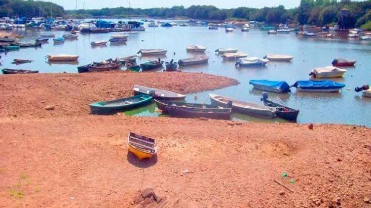 """Bajante del río Uruguay constituye """"amenaza potencial para poblaciones de peces"""""""