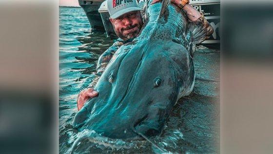 Pescaron un surubí de casi dos metros en el río Paraná
