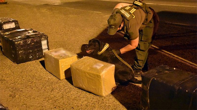 Dos detenidos tras descubrir encomienda con 19 kilos de droga en Entre Ríos