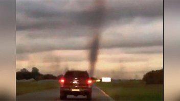 """Video de impresionante """"tornado"""" de mosquitos: expertos explicaron el fenómeno"""