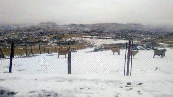 Fotos: Tras un fin de semana de calor, nevó en las sierras de Córdoba
